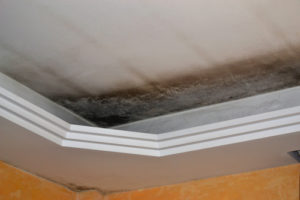 Mold in the ceiling -Aliso Viejo water damage restoration