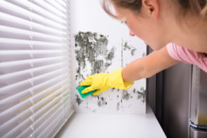 How To Clean Black Mold From Walls