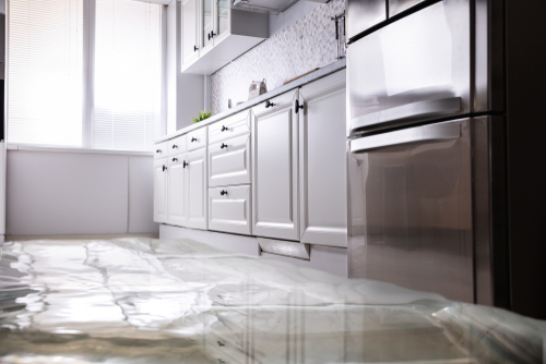 How to determine extent of water damage