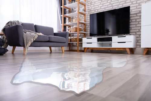 Can you fix water damage on the laminate floor