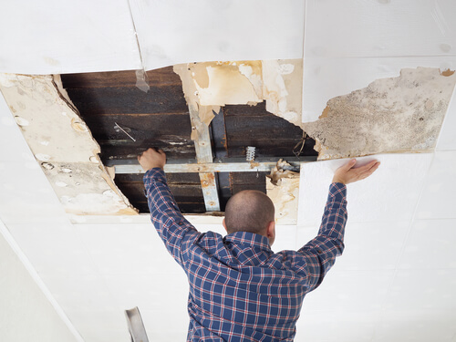 4 Facts about Home Water Damage Every Homeowner Needs to Know